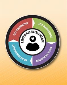 Emotional Intelligence Online Assessment